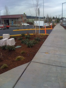 woodinville commercial property structural aesthetic landscape wetland buffer border to street