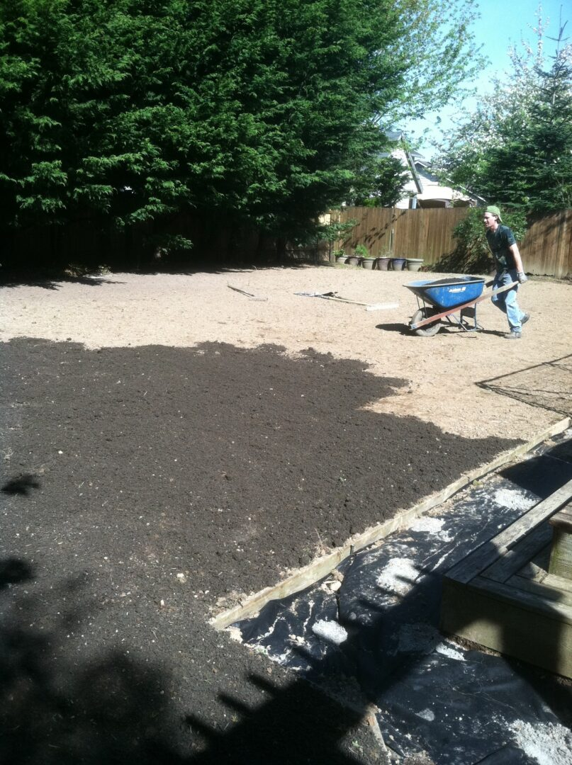 Premium organic topsoil being added to the yard
