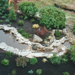 Front yard pond - design & installation