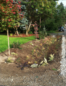 swale roadwater runoff filter soil erosion control recharge groundwater public works city of woodway