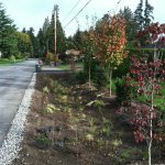 Woodway stormwater management