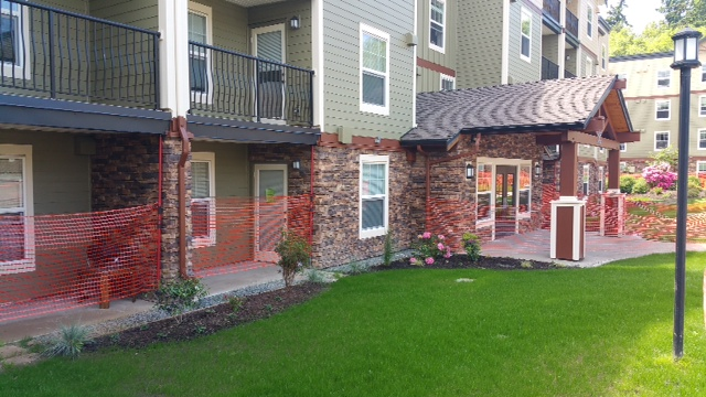 bellingham condo complex entrance border splash pad new lawn drainage improvement mackay landscape services
