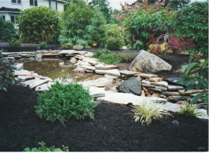 pond step with beds yard stream native plants