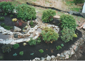 yard pond step stream beds native plants