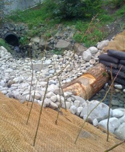 woodinville commercial property reduce erosion stream reclamation restoration log drop improve habitat