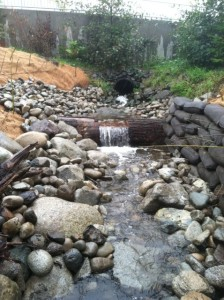 stream bed reclamation restoration woodinville commercial property reduce construction impacts habitat improvement